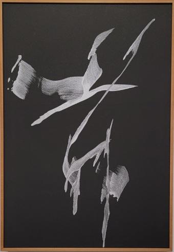 Morita Shiryu, Mau, 1969